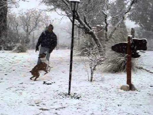 Khw /pl/ástico Nieve Trineo Comodidad